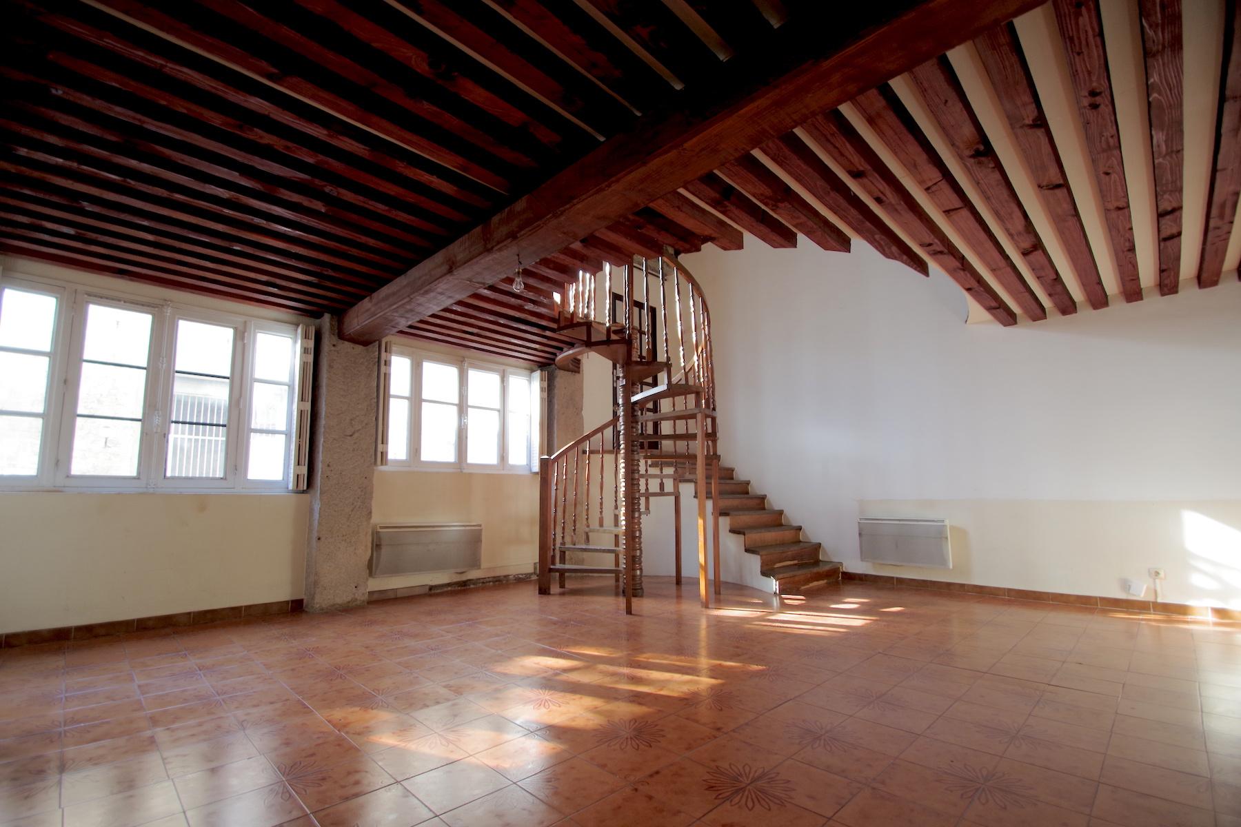 Achat Espace Atypique Lyon croix-rousse, gros caillou, appartement atypique